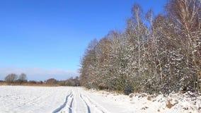 Winter landscape in full HD. Beautiful winter landscape in full HD. Sunny, cold day during winter stock video