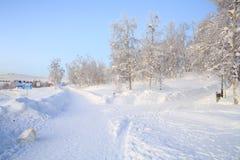 Winter Landscape Garden Stock Photo