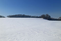 Winter landscape in Germany Royalty Free Stock Photography