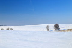 Winter landscape in Germany Royalty Free Stock Image