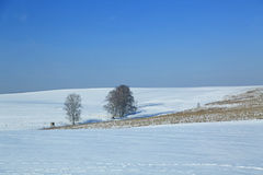 Winter landscape in germany Stock Image