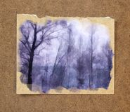 Winter landscape in gloomy day. birch branches in the backgroun. D of snow in the passepartout stock photo