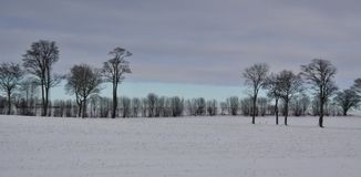 Winter landscape  and gloomy sky Stock Images