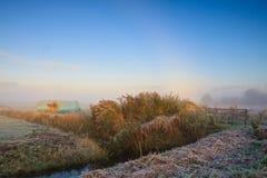 Winter landscape of grassland at sunrise Stock Photo