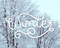 Winter landscape with hand lettering Stock Images