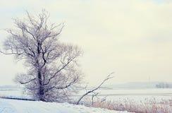 Winter landscape on Havel River (Germany). Havelland Stock Images