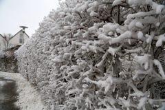 Winter landscape. Winter landscape after heavy snowfall.  stock image