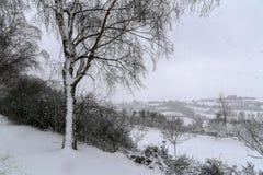 Winter landscape. Winter landscape after heavy snowfall.  stock photography