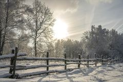 Winter landscape during heavy snowfall royalty free stock image