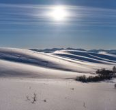 Winter landscape with heels under snow with Sun on blue sky. Altai, Siberia, Russia royalty free stock photos