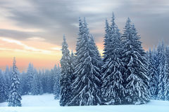 Winter landscape of high snowy mountains Royalty Free Stock Photography