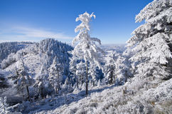 Winter landscape in the hills Stock Photo