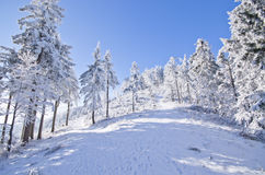 Winter landscape in the hills Royalty Free Stock Photos