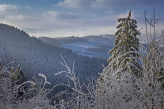 Winter landscape with hoarfrost Stock Photos