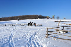 Winter landscape, the horse and people Stock Photos