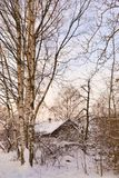 Winter landscape with a house and trees royalty free stock image