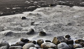 Winter Landscape. Ice on stones, Wadden sea, Esbjerg, Denmark Royalty Free Stock Photos