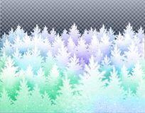 Winter landscape  with icy frozen spruce forest Royalty Free Stock Photo