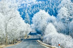 Winter Landscape with icy road. Aerial view trees background Travel scenery Stock Photography