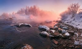 Free Winter Landscape In Pink Tones: Frosty Morning, River Blurred Water,Stones In Frazil And Sun In Fog.Belarus Landscape With Snowy T Royalty Free Stock Images - 124703419