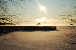 Winter landscape with an island. Sunny winter landscape with a small island in the mist stock image