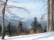 Winter landscape. January on Baiului mountains in Romania Royalty Free Stock Photo
