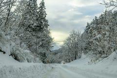 Winter Landscape in Japan Stock Image
