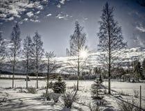 Winter landscape. Landscape in winter at Jyvaskyla, Finland Stock Images