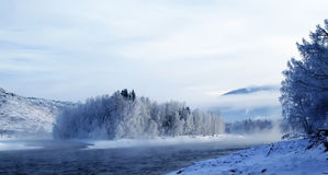Winter landscape with Katun river at Altai Stock Photography