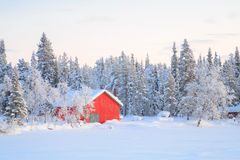 Winter landscape Kiruna Sweden. Winter landscape with house at Kiruna Sweden lapland Royalty Free Stock Photo