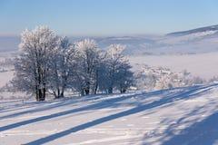 Winter landscape (Kraliky) stock images