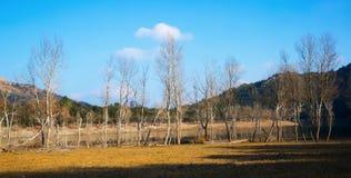 Winter landscape with lake.  Catalonia Stock Photo