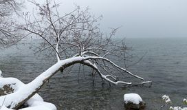 Winter landscape. Lake Leman. Switzerland at snowing day Royalty Free Stock Images