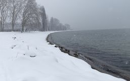 Winter landscape, lake Leman. Winter landscape over the lake Leman at beautiful snowing day with the mallard dacks Stock Photos