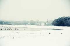Winter landscape on Lake next to Havel River (Germany) Royalty Free Stock Photography