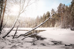 Winter landscape with a lake. Russia. Karelia Royalty Free Stock Photo