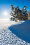Winter landscape on lakeside Stock Photos