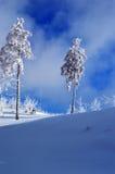 Winter Landscape. Winter Landscale on Harghita mountains Madaras Romania Royalty Free Stock Photos