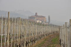 Winter landscape - Langhe region Piedmont, Italy Stock Photography