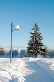 Winter landscape with lantern and spruce Stock Image