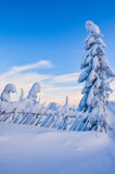 Winter landscape in Lapland Finland Royalty Free Stock Photos