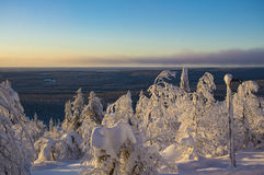 Winter landscape in Lapland Finland Royalty Free Stock Image