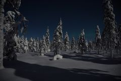 Winter landscape Lapland, Finland royalty free stock images