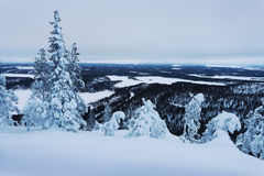 Winter landscape in Lapland Royalty Free Stock Images