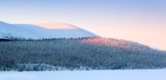 Winter landscape from Lapland Royalty Free Stock Photos