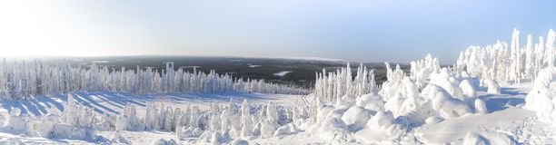 Winter landscape in Lapland. Royalty Free Stock Photo