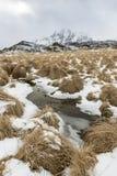 Winter landscape on Lofoten Islands, Stock Photography