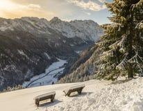 Winter landscape , Logarska Dolina, Slovenia. Royalty Free Stock Photography