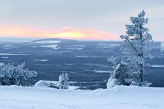 Winter landscape / lonely tree, sun and valley Stock Photos