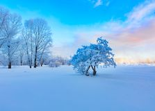 Winter landscape. Lots of snow and frost, cold morning. Winter landscape. Lots of snow and frost, cold morning stock photography